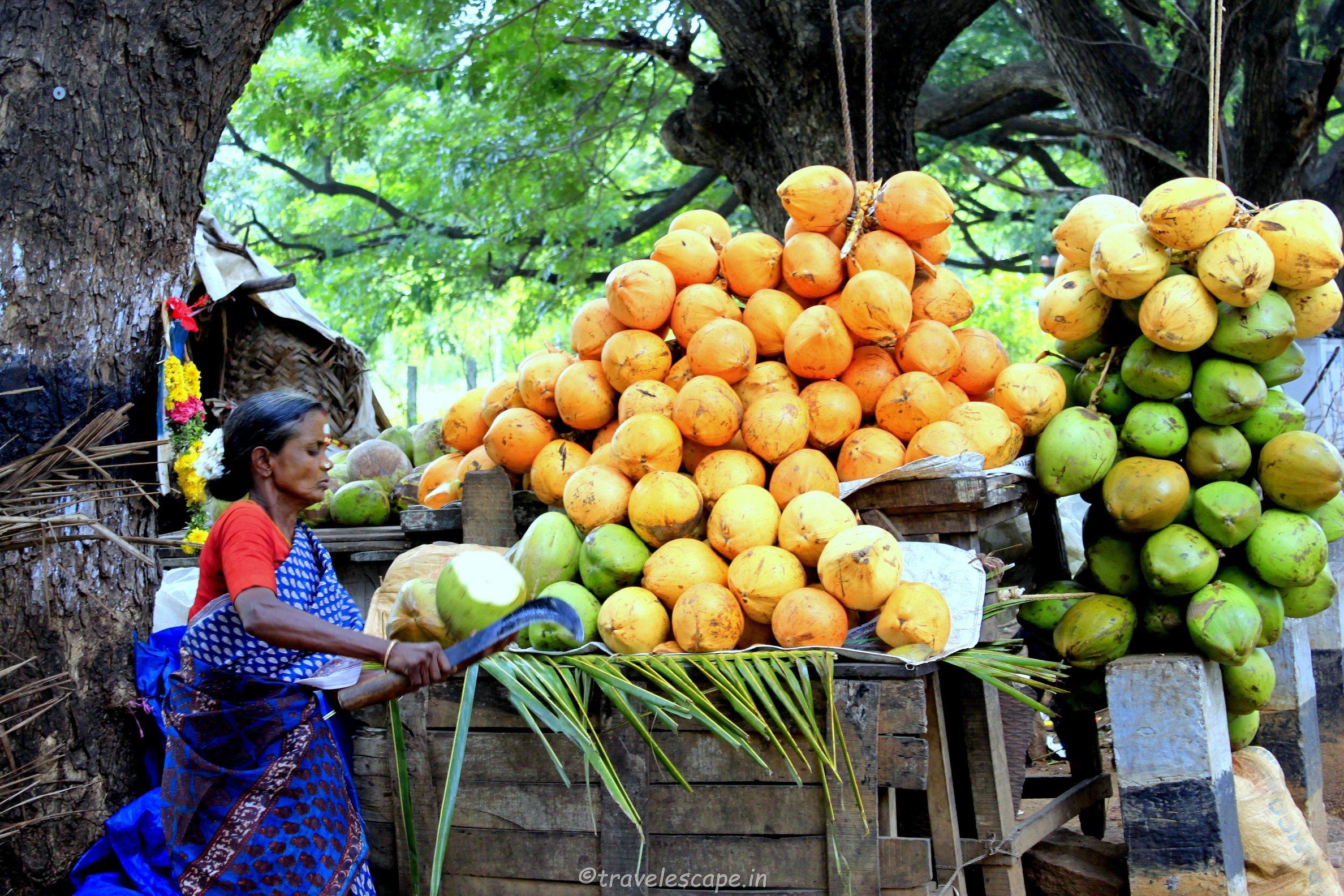 coconut water woman - indian enterpreneur
