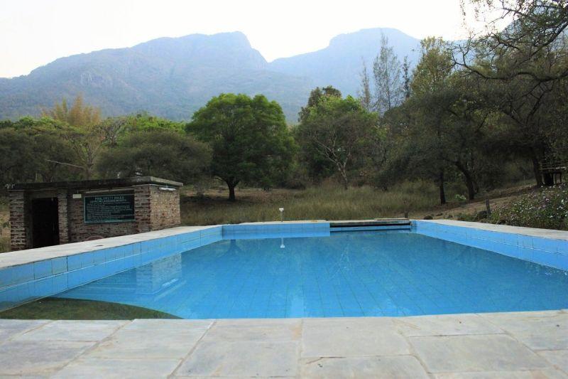 Jungle hut resort Swiming pool