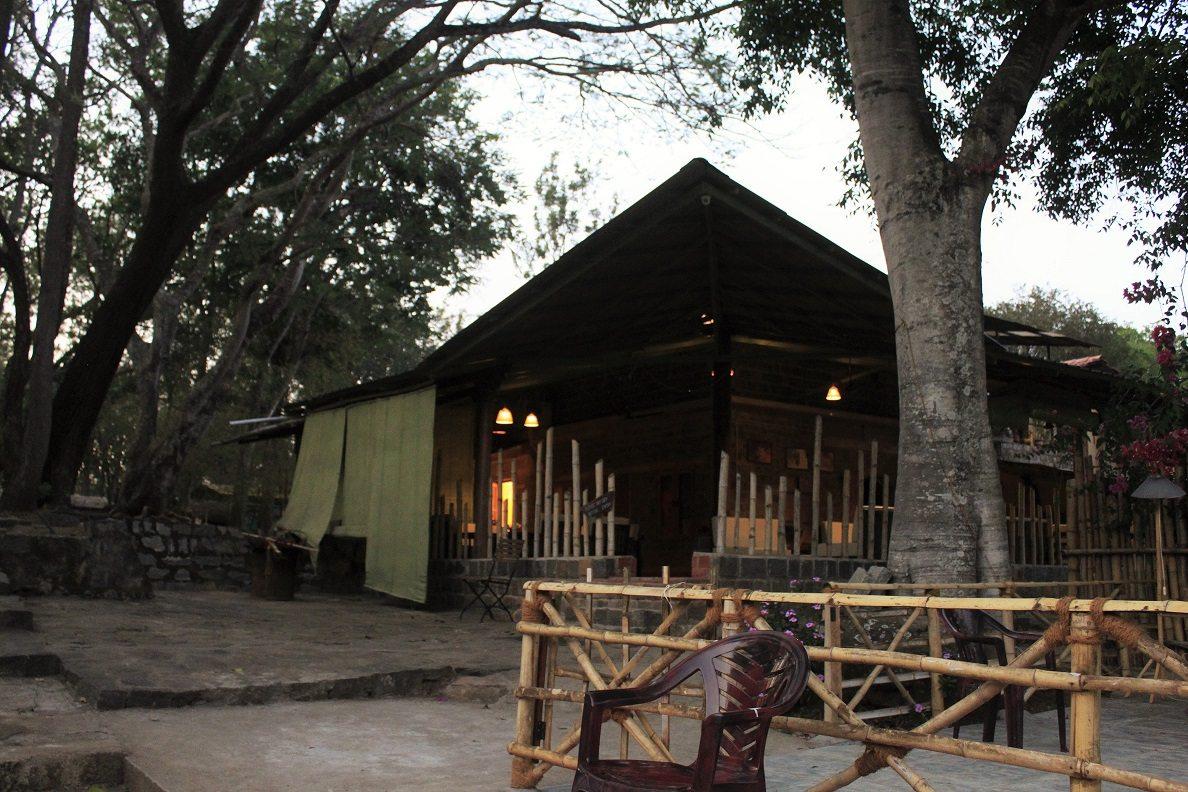 Jungle hut resort common area