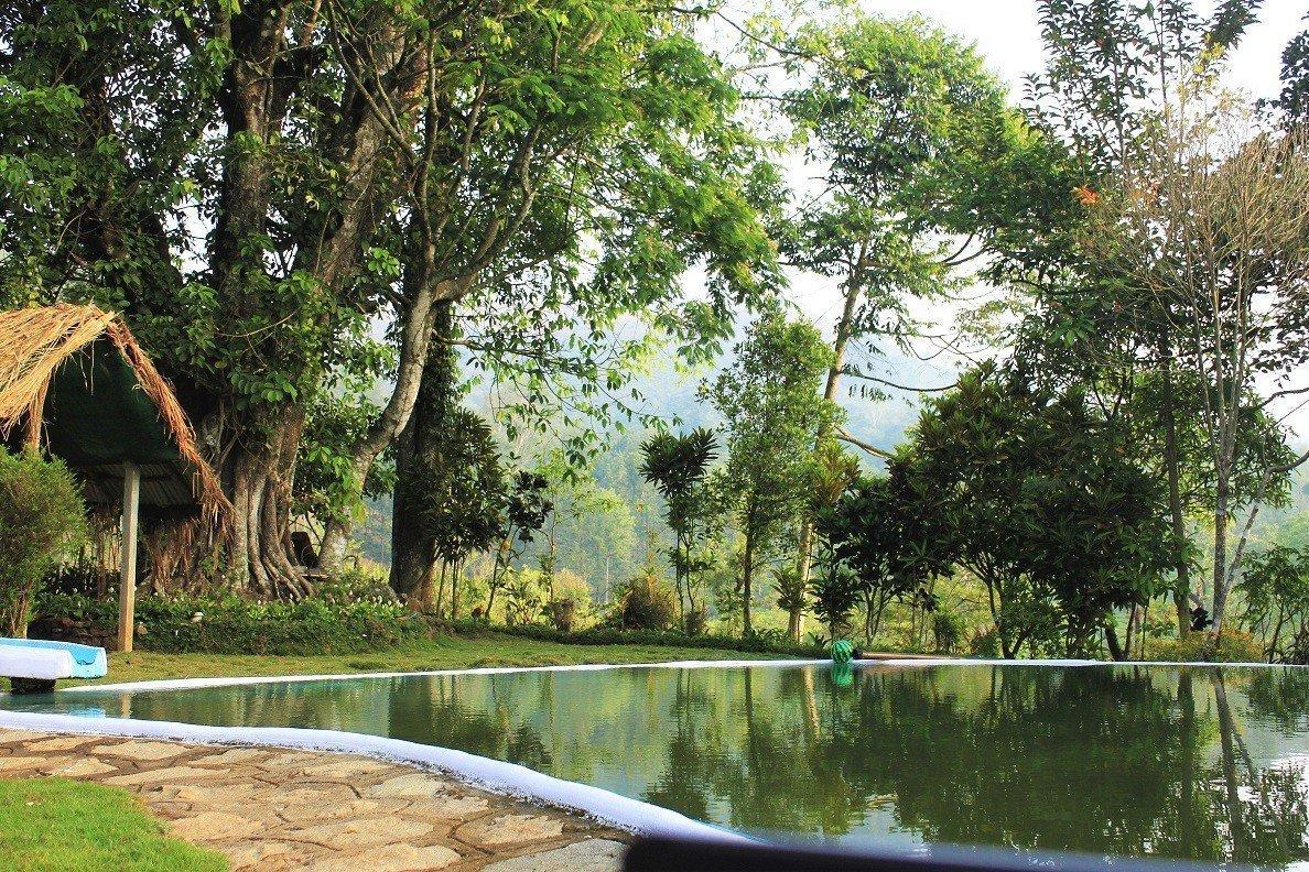 Amberina natural pool