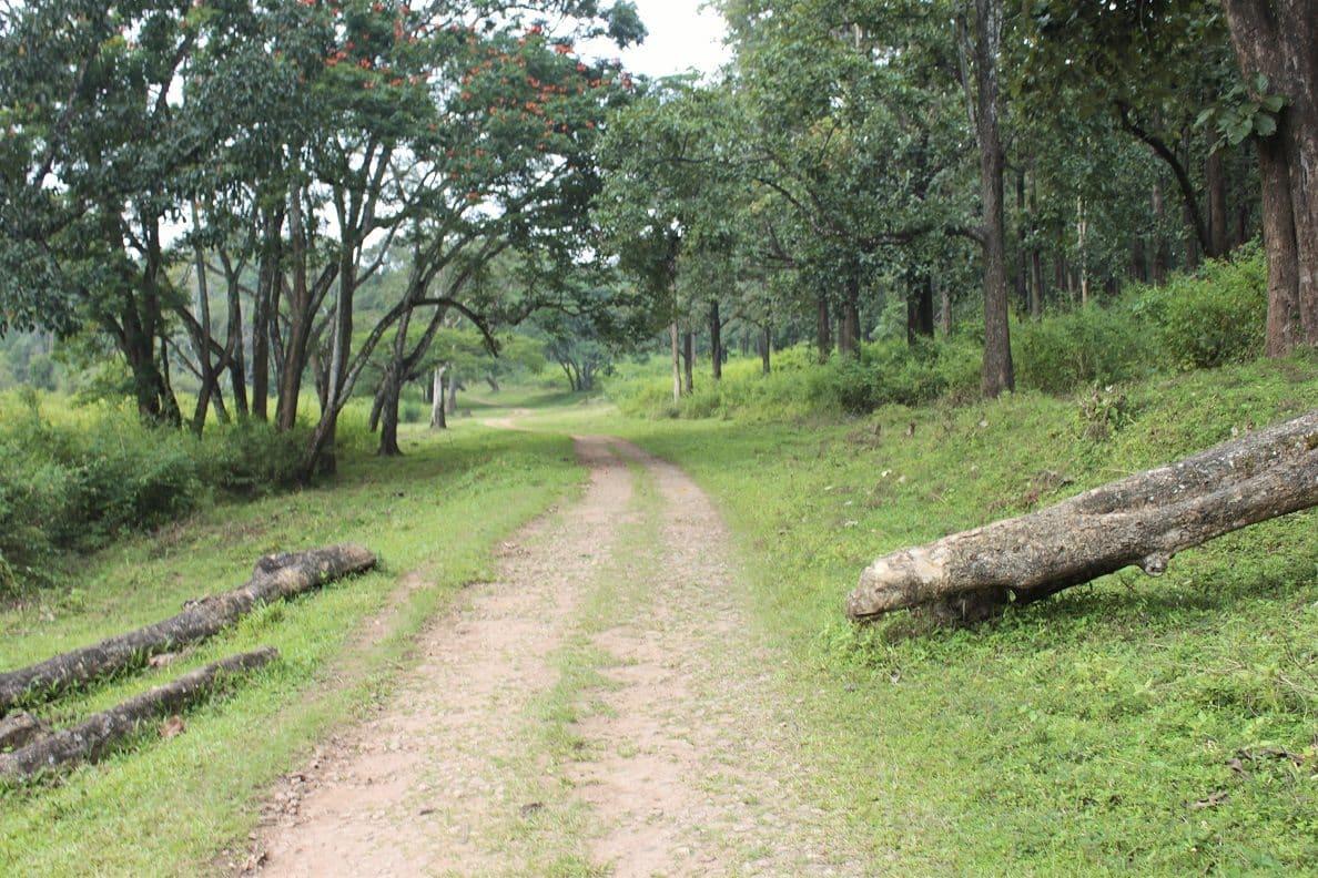 Wayanad trek