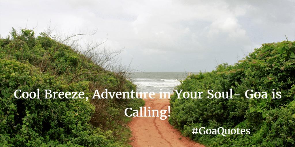 Going Goa Quotes