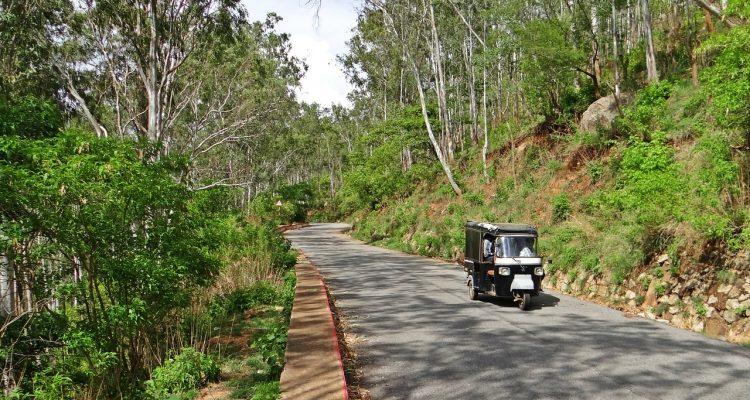 Nandi Hills Road