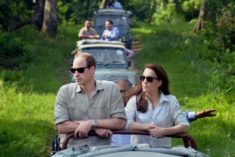 Kaziranga, Assam, Northeast India, Wildlife, Nature, Price william, Kate Middleton, Assam, India