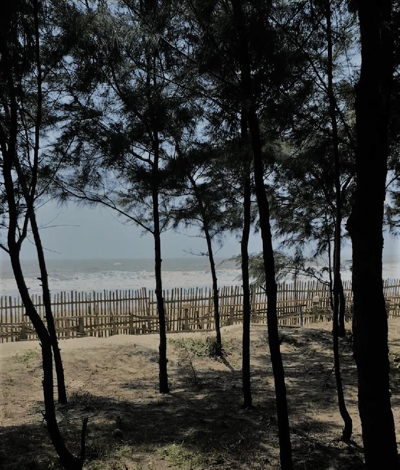 Mandarmani, India, Resort Village, West Bengal, sea view