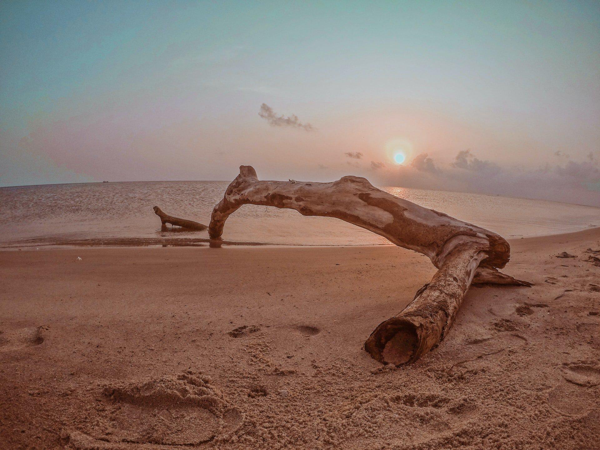 Dhanushkodi Beach-Fahad