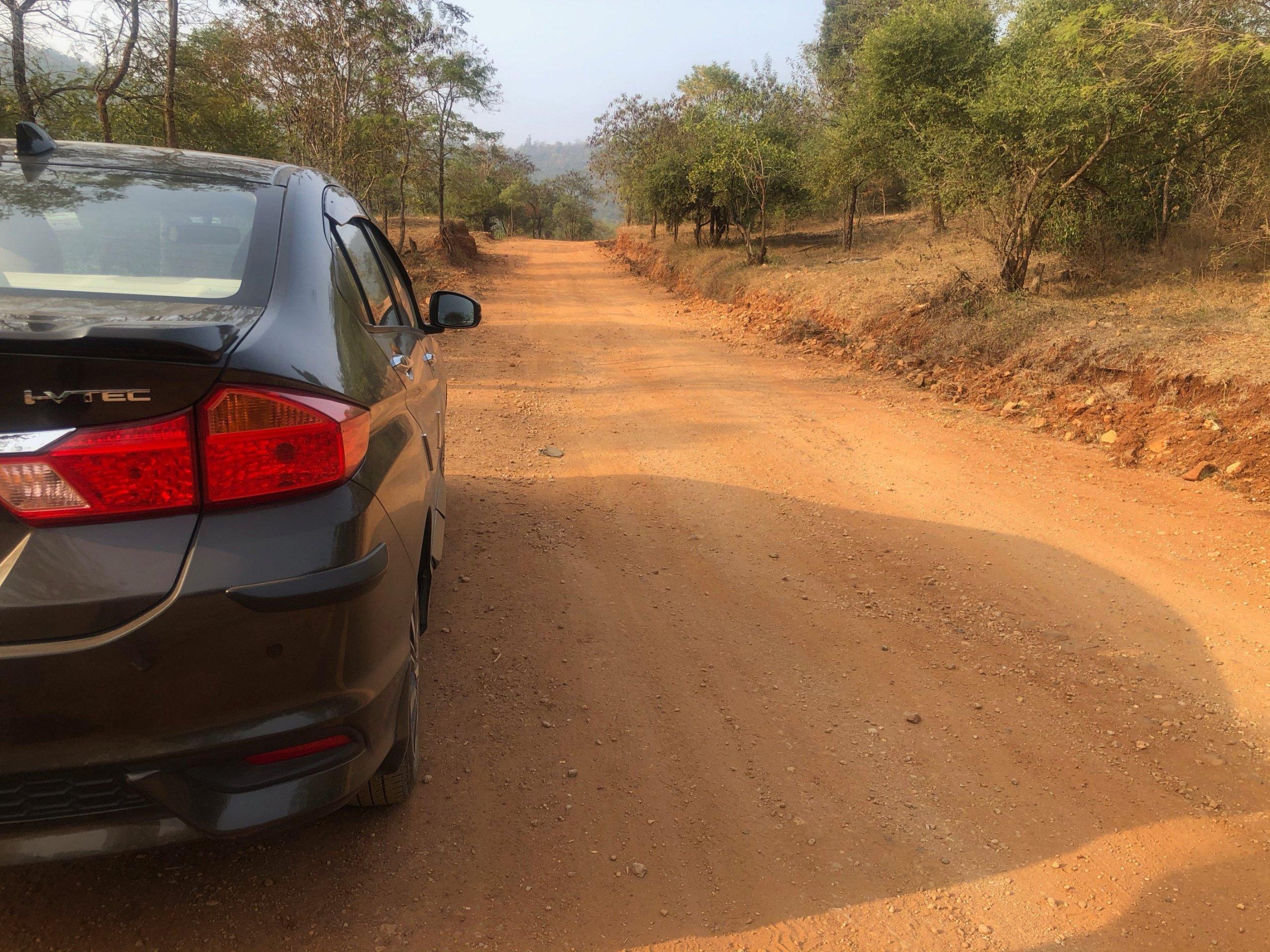 DabbaGuli Forest Road